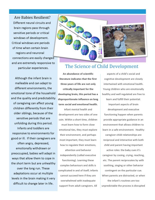AFFC Newsletter-PDF_Page_2