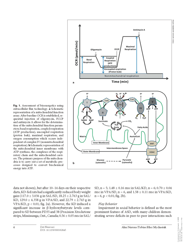 Ahn et al, VPA + Social and Metabolic Changes_Page_04