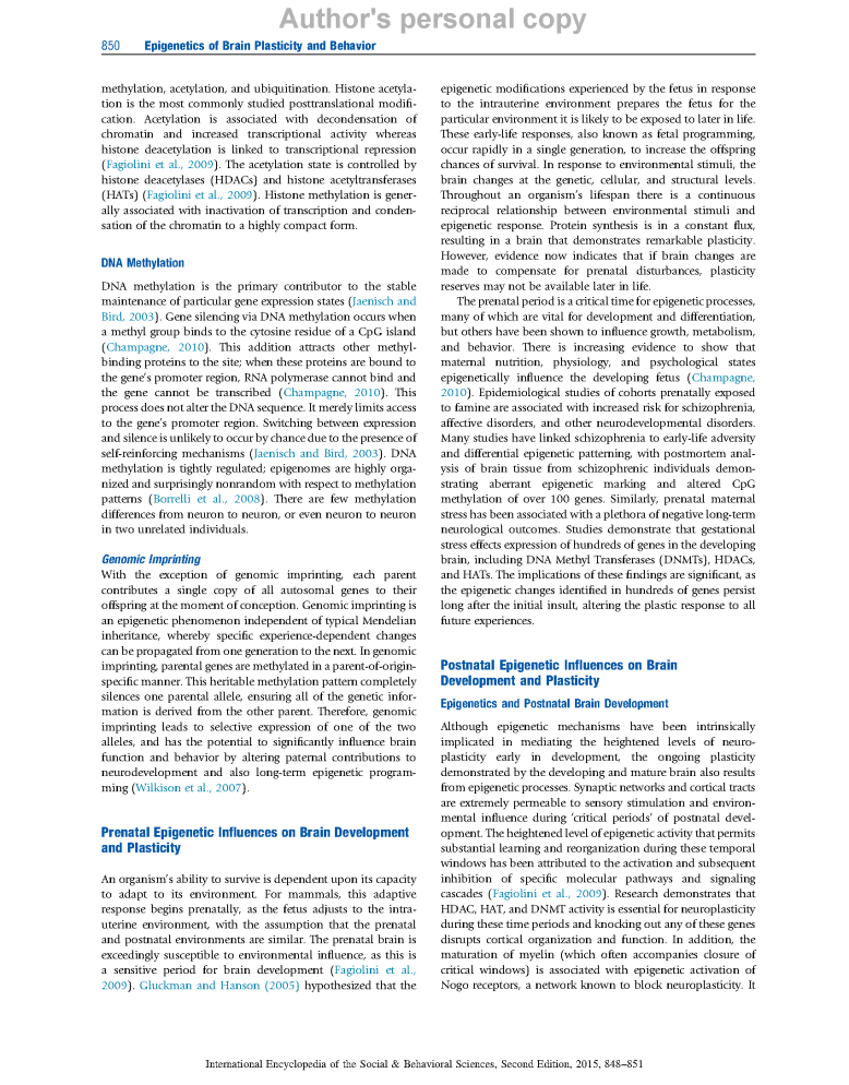 Epigenetic's Of Brain Plasticity And Behaviour