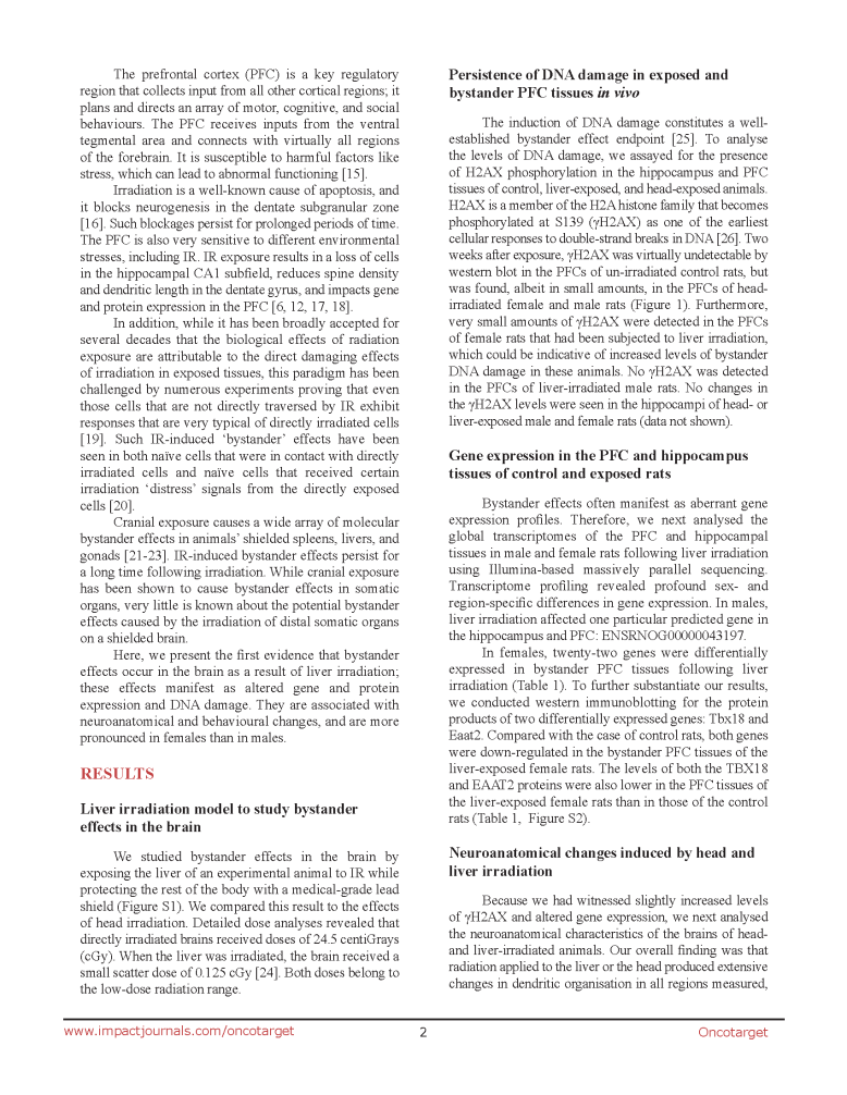 Liver Irradiation & Rat Brain_Page_02