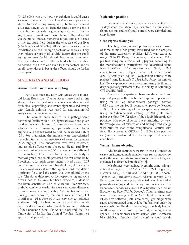 Liver Irradiation & Rat Brain_Page_11