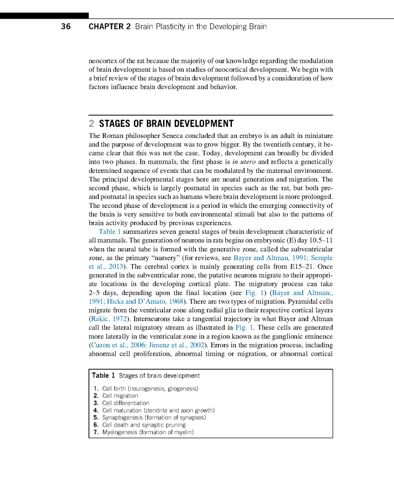 Brain Plasticity in the Developing Brain