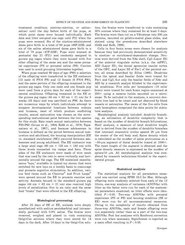 Prenatal Nicotine + Environmental Enrichment