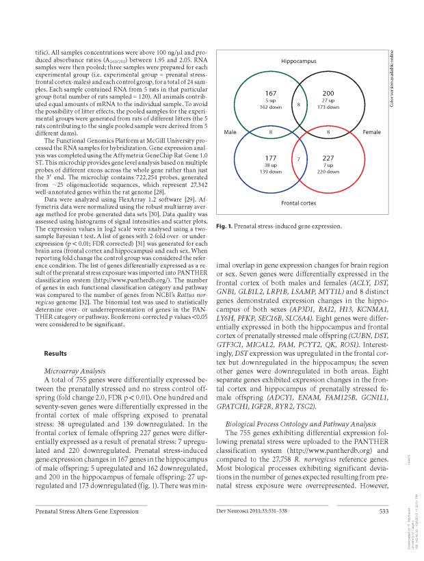 Prenatal Stress Genetics_Page_3