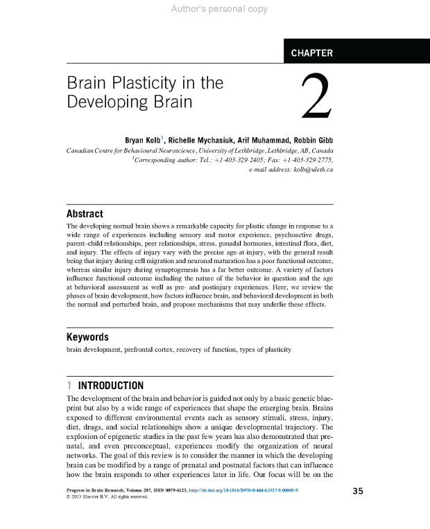 Brain plasticity in the developing brain