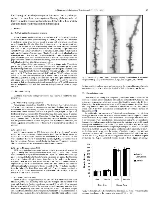 Tactile Stimulation Golgi - BBR_Page_2