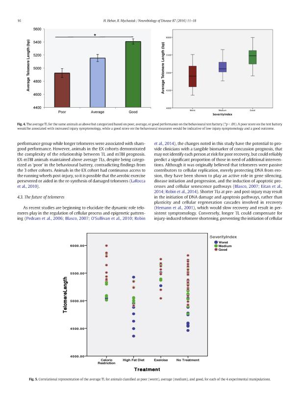 Telomere Biomarker