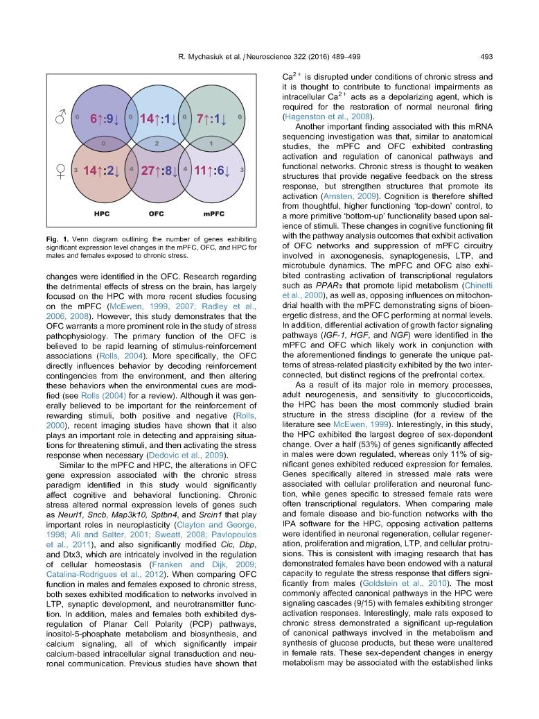 Chronic Stress, Gene Expression- Neuroscience_Page_05