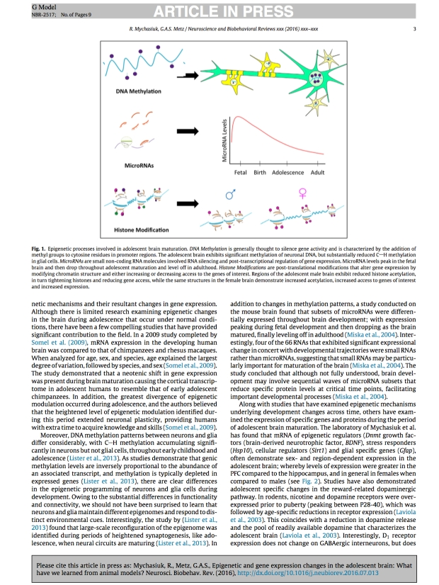 epigenetic-and-gene-expression-changes3