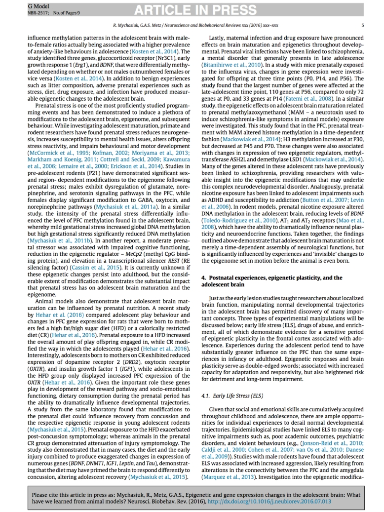epigenetic-and-gene-expression-changes5